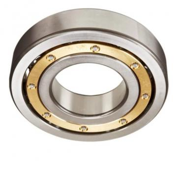 Single Row Solid Drawn Cup NSK/IKO Quality Needle Roller Bearings Nk145/35 Nk150/25 Nk150/35 Nk155/25 Nk155/35 Nk160/25 Nk160/35 Nk165/25 Nk165/35 Nk170/25