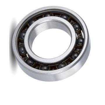 NSK Double Row Bearing Spherical Roller Bearing 22215 Ea E4 C3